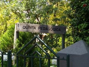 QuintaPedaggica014